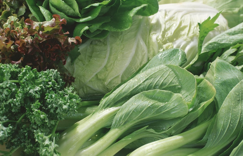 Salatköpfe und grünes Gemüse