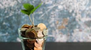 Münzen und Pflanze in einem Glas