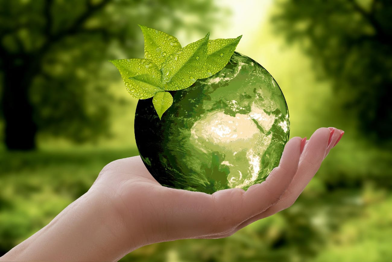 Grüner Erdball in Hand