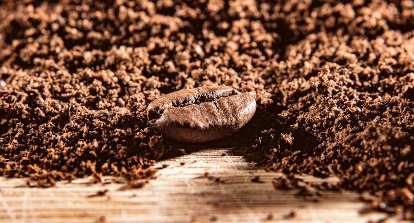 Kaffeebohne vor gemahlenem Kaffee