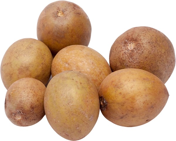 Sapodilla Frucht Breiapfelbaum