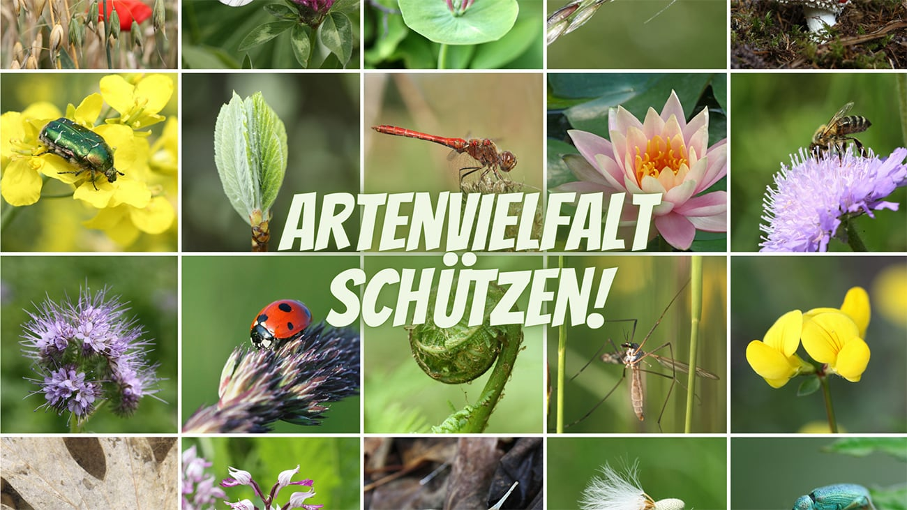 Artenvielfalt schützen