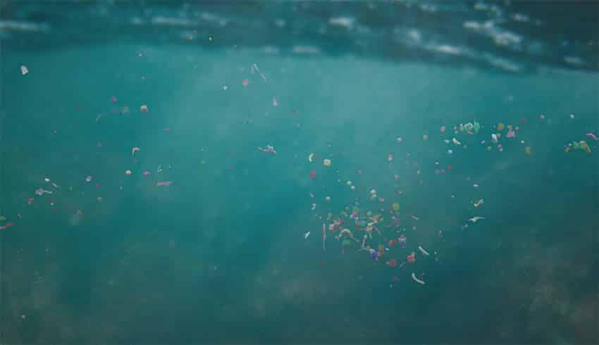 mikroplastik meer ozean