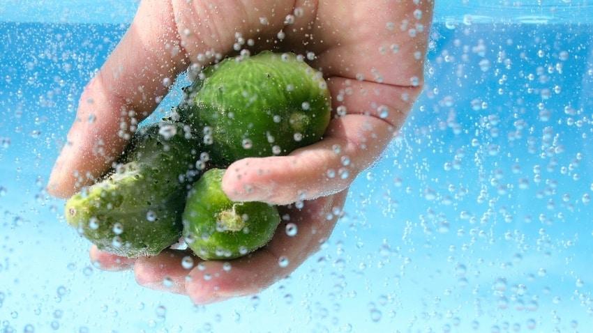 Gemüse-waschen