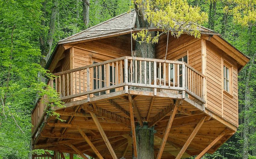 Großes, rundes Baumhaus
