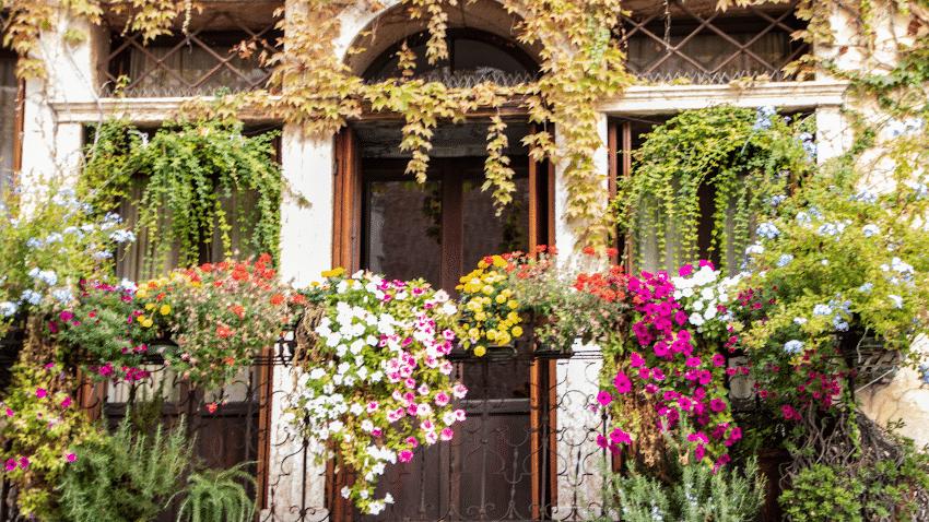 Balkon mit vielen bunten Blumen