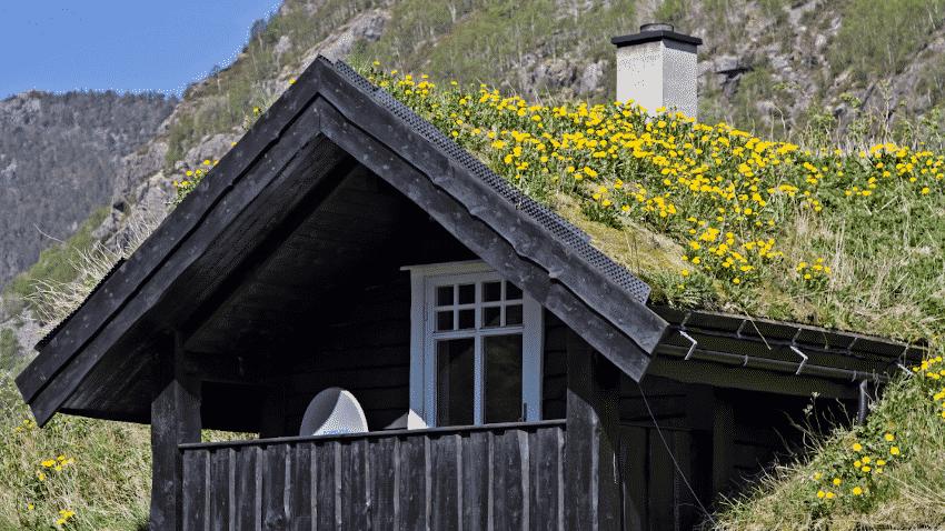 Haus mit Dachbegrünung